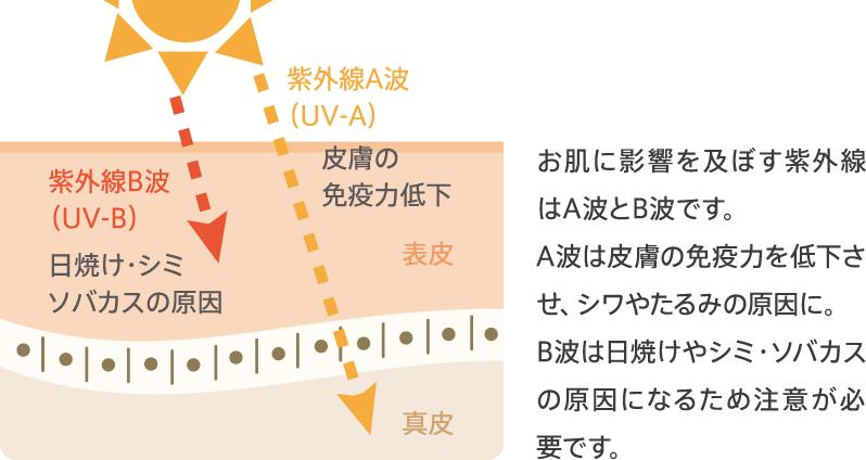 https://www.ykkap.co.jp/consumer/glass_select/uv/img/img_sec02-02.png
