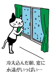 冷え込んだ朝、窓に水滴がいっぱい…