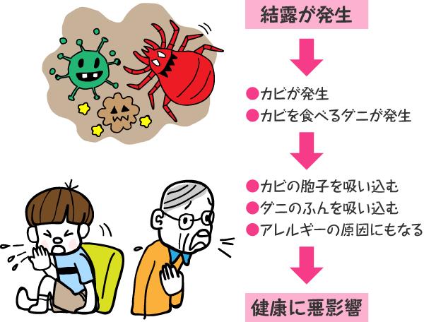 結露が発生→●カビが発生 ●カビを食べるダニが発生→●カビの胞子を吸い込む ●ダニのふんを吸い込む ●アレルギーの原因にもなる →健康に悪影響
